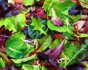 Salad Punnet 125g