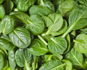Spinach Bag 200g