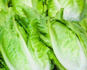 Lettuce Double Gem